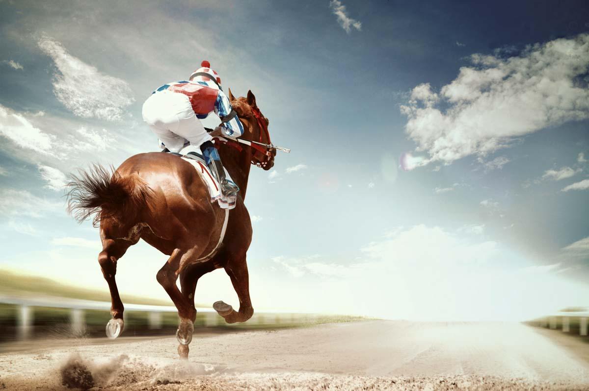sports betting 04